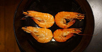 Shrimp Pigmentation
