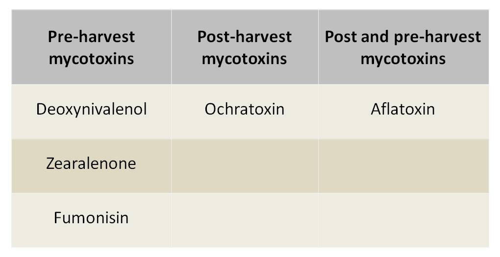Classification of mycotoxins according to their origin