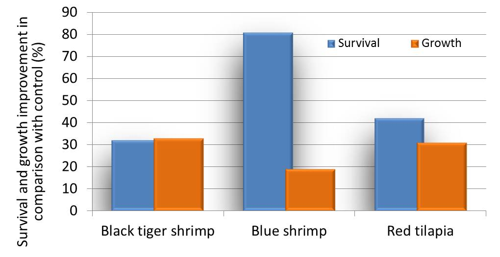 Growth and Survival Rate in Tilapiaand in Shrimp with Perfostim